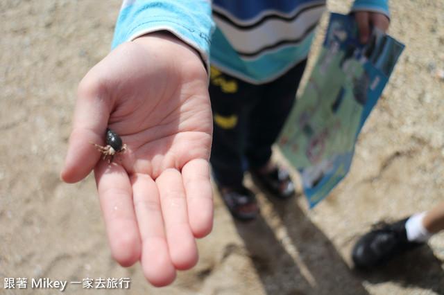 跟著 Mikey 一家去旅行 - 【 恆春 】墾丁情人灘 - 寄居蟹篇