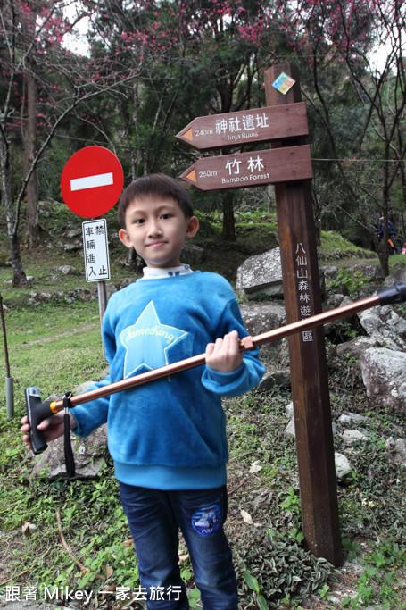 跟著 Mikey 一家去旅行 - 【 谷關 】八仙山國家森林遊樂區