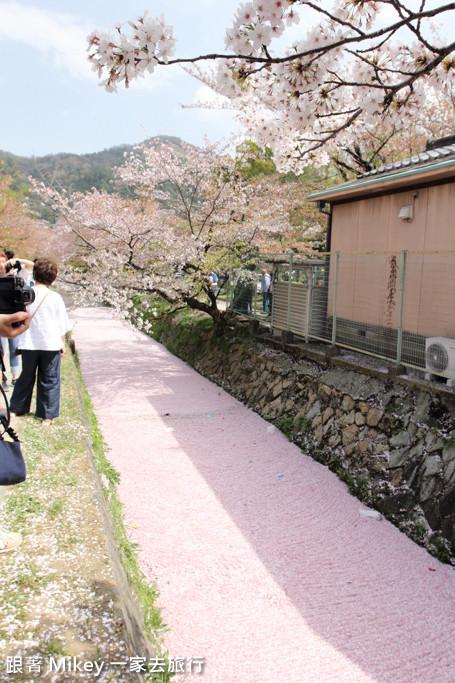 跟著 Mikey 一家去旅行 - 【 京都 】哲學之道