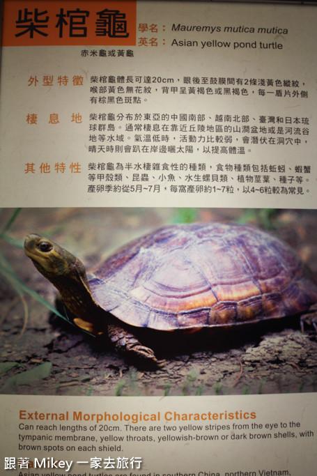 跟著 Mikey 一家去旅行 - 【 望安 】望安綠蠵龜觀光保育中心 - Part 2