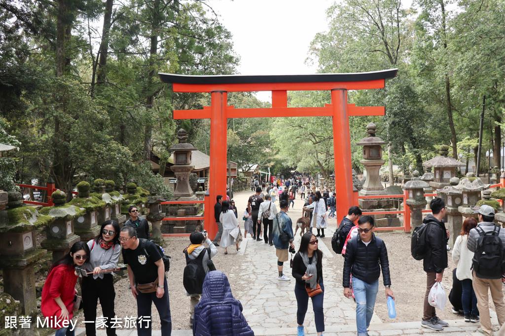 跟著 Mikey 一家去旅行 - 【 奈良 】春日大社 - Part III