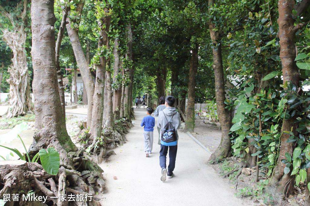 跟著 Mikey 一家去旅行 - 【 沖繩 】備瀨福木林道