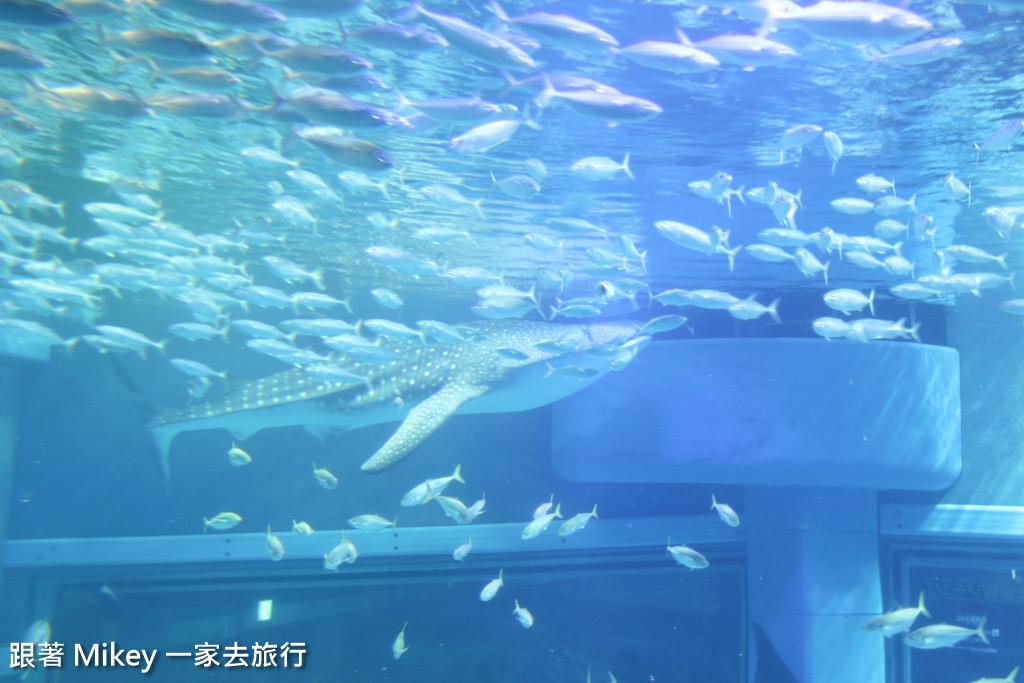 跟著 Mikey 一家去旅行 - 【 大阪 】海遊館 - Part I