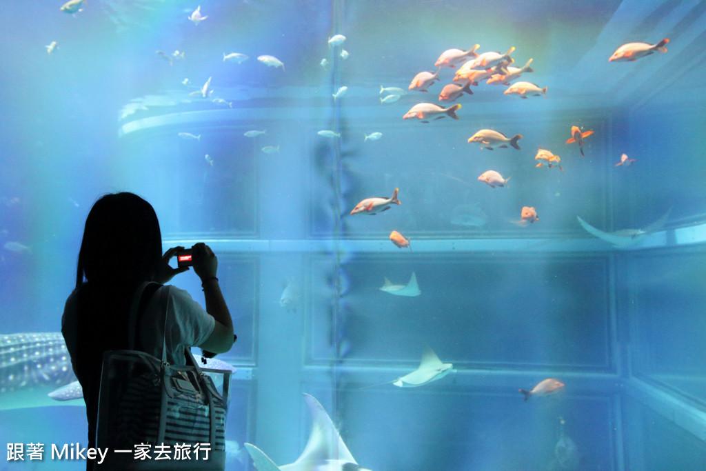 跟著 Mikey 一家去旅行 - 【 大阪 】海遊館 - Part II