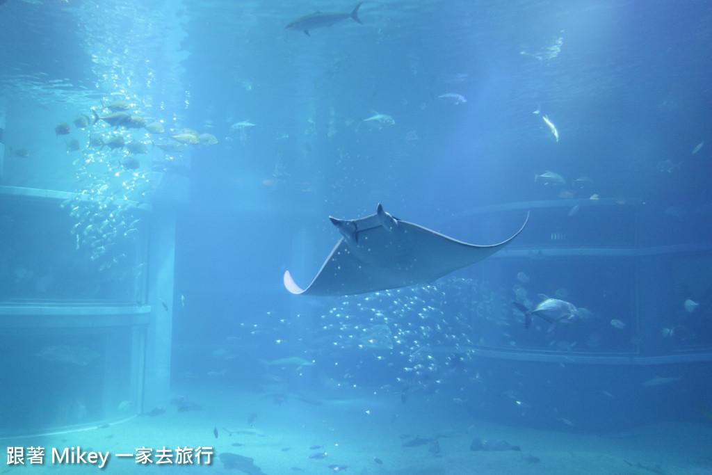 跟著 Mikey 一家去旅行 - 【 大阪 】海遊館 - Part III