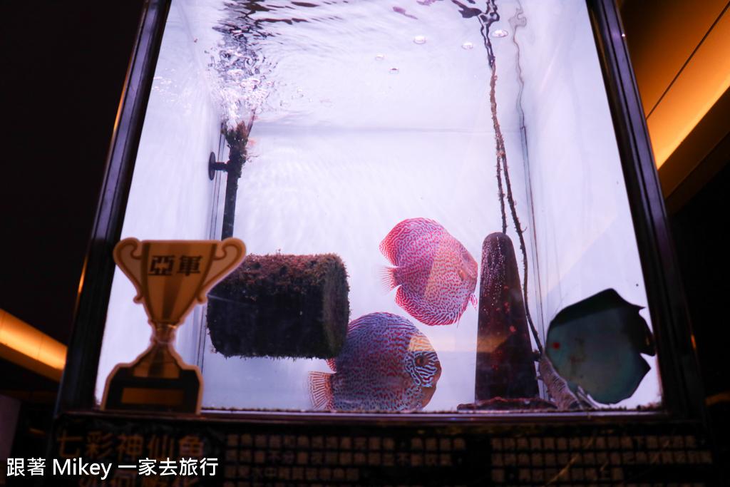 跟著 Mikey 一家去旅行 - 【 草屯 】七彩神仙魚主題餐廳