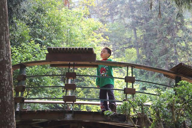 跟著 Mikey 一家去旅行 - 【 魚池 】日月潭蝴蝶園