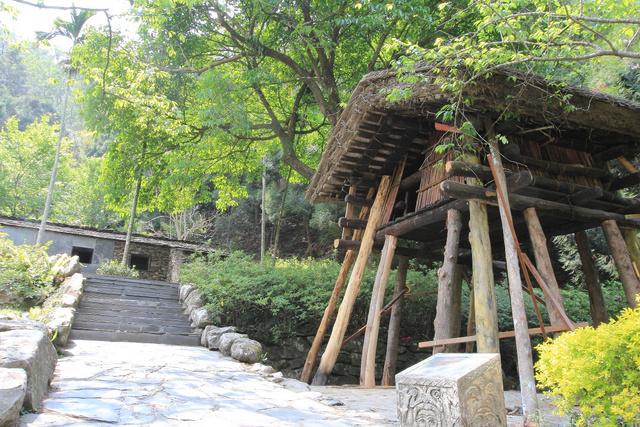 跟著 Mikey 一家去旅行 - 【 魚池 】九族文化村