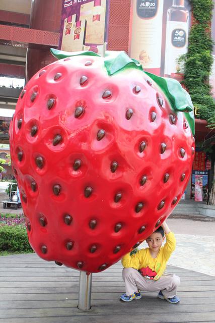 跟著 Mikey 一家去旅行 - 【 大湖 】大湖酒莊 & 草莓文物館