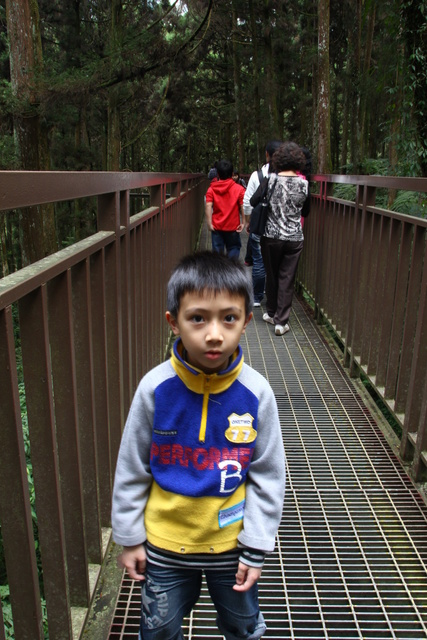 跟著 Mikey 一家去旅行 - 【 南投 】溪頭森林遊樂區