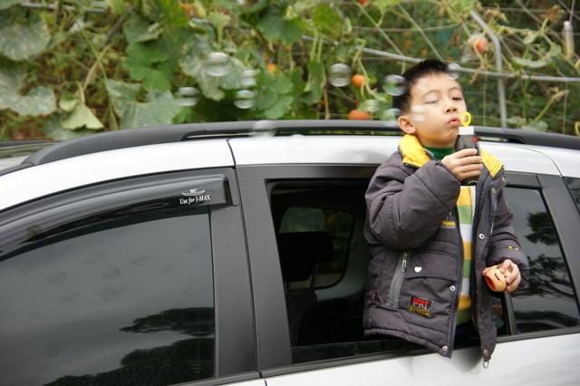 跟著 Mikey 一家去旅行 - 【 造橋 】火炭谷休閒農場 - 南瓜園