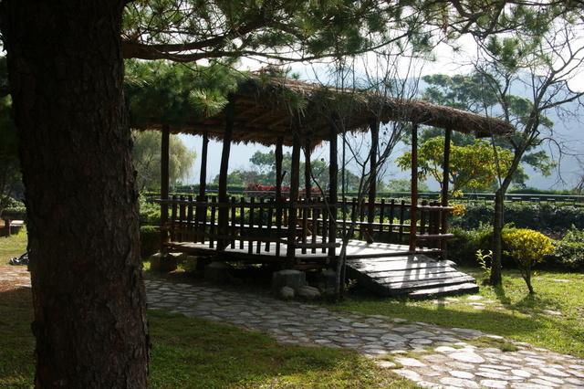 跟著 Mikey 一家去旅行 - 【 仁愛 】泰雅渡假村 - 台灣島 & 馬赫坡廣場