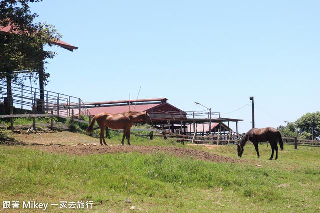 跟著 Mikey 一家去旅行 - 【 卑南 】初鹿牧場 - Part II