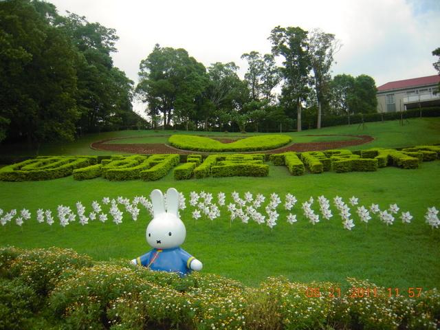 跟著 Mikey 一家去旅行 - 【 三義 】西湖渡假村 - Miffy 桐樂會