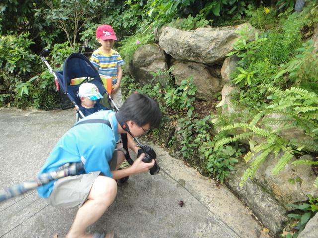 跟著 Mikey 一家去旅行 - 【 龍潭 】小人國主題樂園 - 亞洲篇