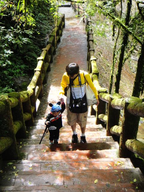 跟著 Mikey 一家去旅行 - 【 竹山 】杉林溪森林遊樂區