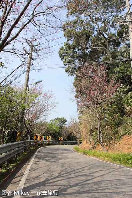 跟著 Mikey 一家去旅行 - 【 淡水 】滬尾櫻花大道