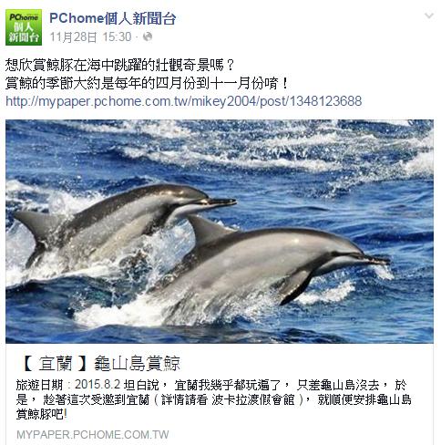 跟著 Mikey 一家去旅行 - 【 媒體露出 】 Facebook - PCHome 個人新聞台 - 想欣賞鯨豚在海中跳躍的壯觀奇景嗎?