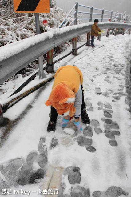 跟著 Mikey 一家去旅行 - 【 信義 】踏雪尋梅 - 合歡山