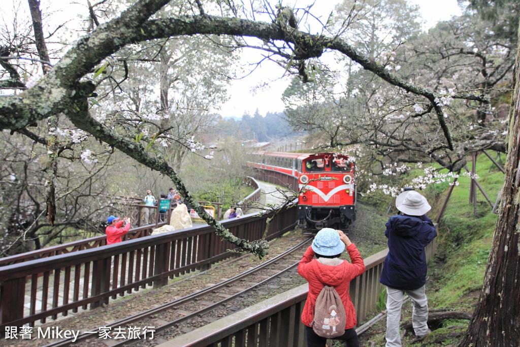 跟著 Mikey 一家去旅行 - 【 嘉義 】阿里山國家風景區 - 沼平車站