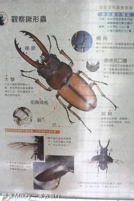 跟著 Mikey 一家去旅行 - 【 員山 】鳳凰宿甲蟲生態民宿 - 生態篇