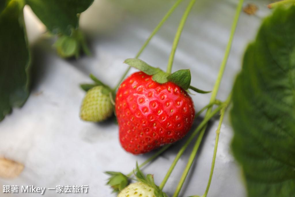 跟著 Mikey 一家去旅行 - 【 內湖 】莓圃觀光休閒農園